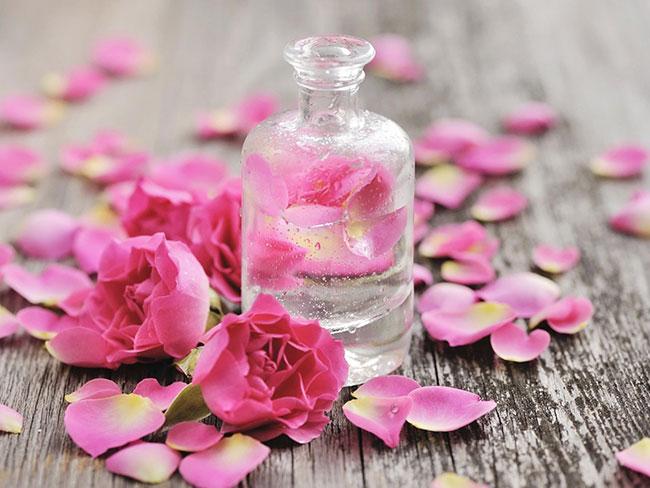 Nước hoa hồng là gì? Nó có phải là toner hay không?
